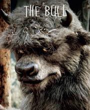 Thebull